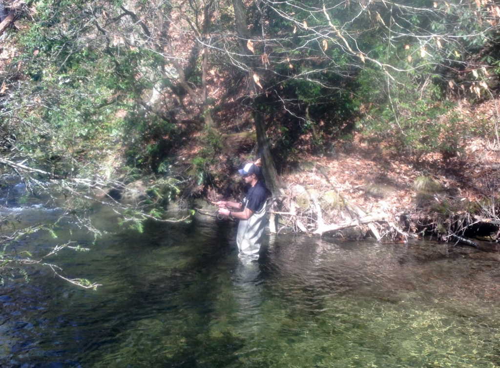 Mainely fly fishing blog fishing report from the western for Davidson river fishing report