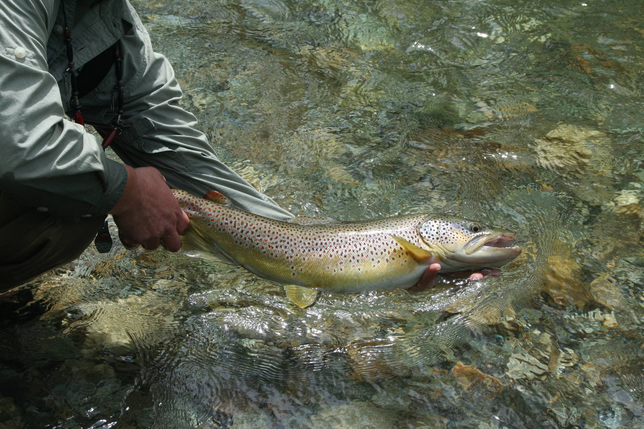 Flyfishers guide to new england mainely fly fishing blog for White river fishing