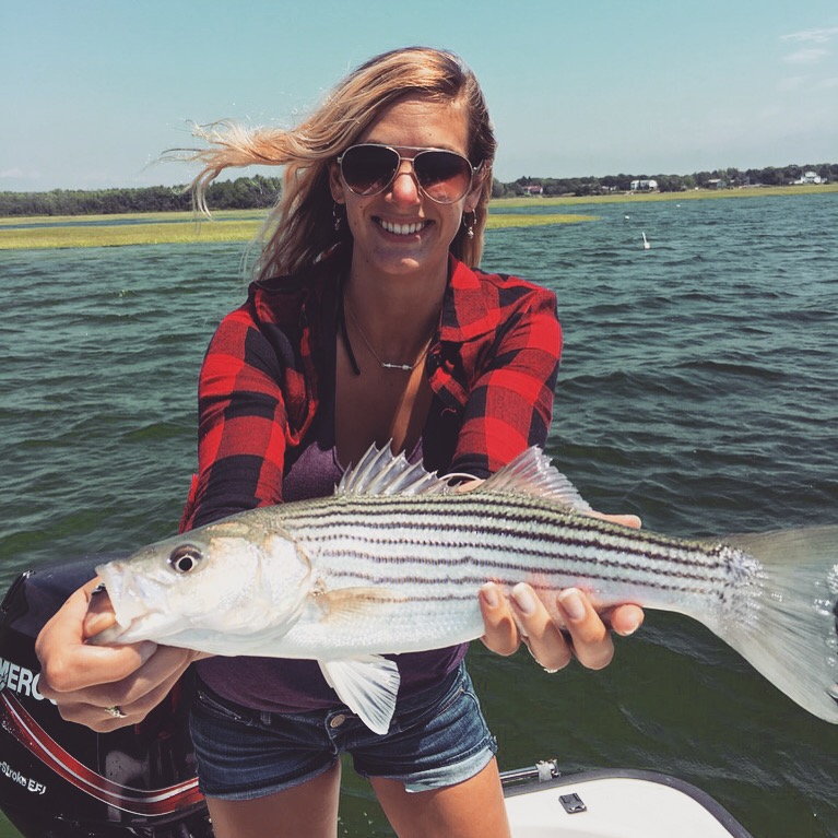 Mainely fly fishing blog fishing report from the western for Striper fishing lake cumberland