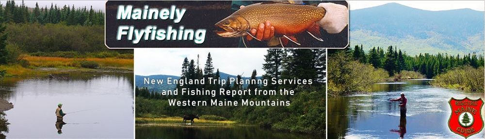Fishing Report | Mainely Fly Fishing Blog